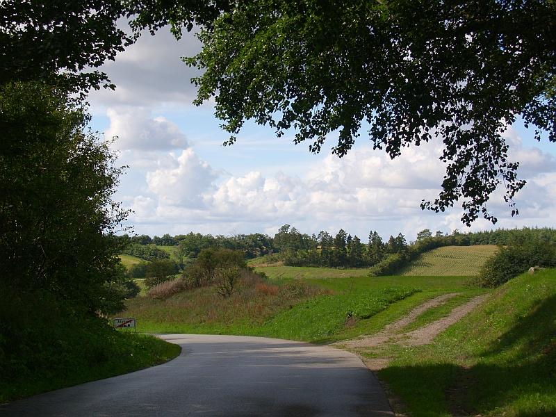 Een prachtige doorkijk in het Deense landschap © copyright dutchmarco