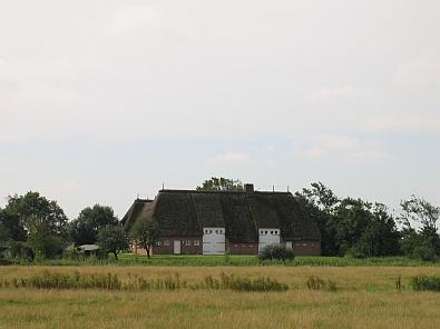 Boerderij in het vlakke landschap © copyright dutchmarco