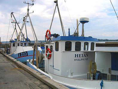 Vissersschepen in de haven van Hvalpsund © copyright dutchmarco