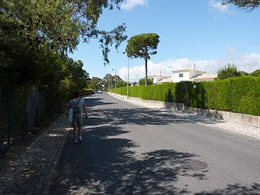 Rua dos Faisões © copyright Dutchmarco